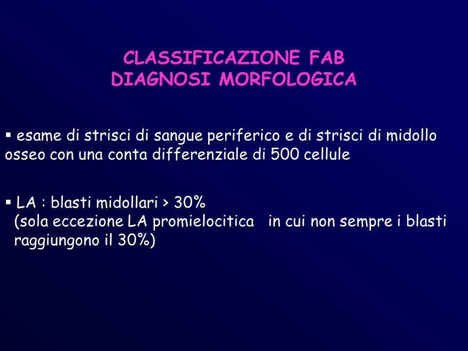CLASSIFICAZIONE FAB DIAGNOSI MORFOLOGICA