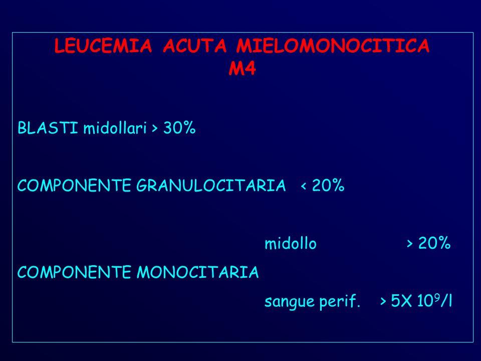 LEUCEMIA ACUTA MIELOMONOCITICA M4
