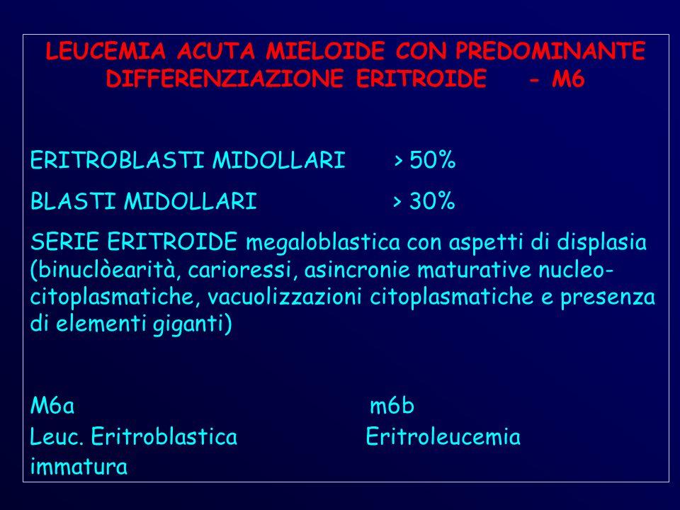 LEUCEMIA ACUTA MIELOIDE CON PREDOMINANTE DIFFERENZIAZIONE ERITROIDE - M6