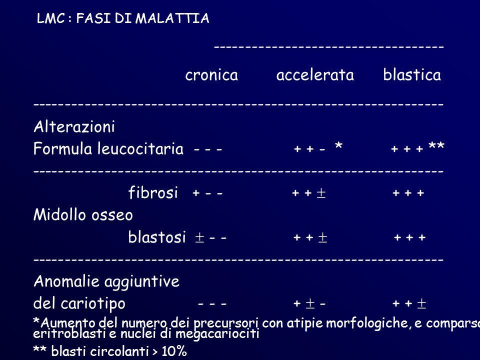 ----------------------------------- cronica accelerata blastica