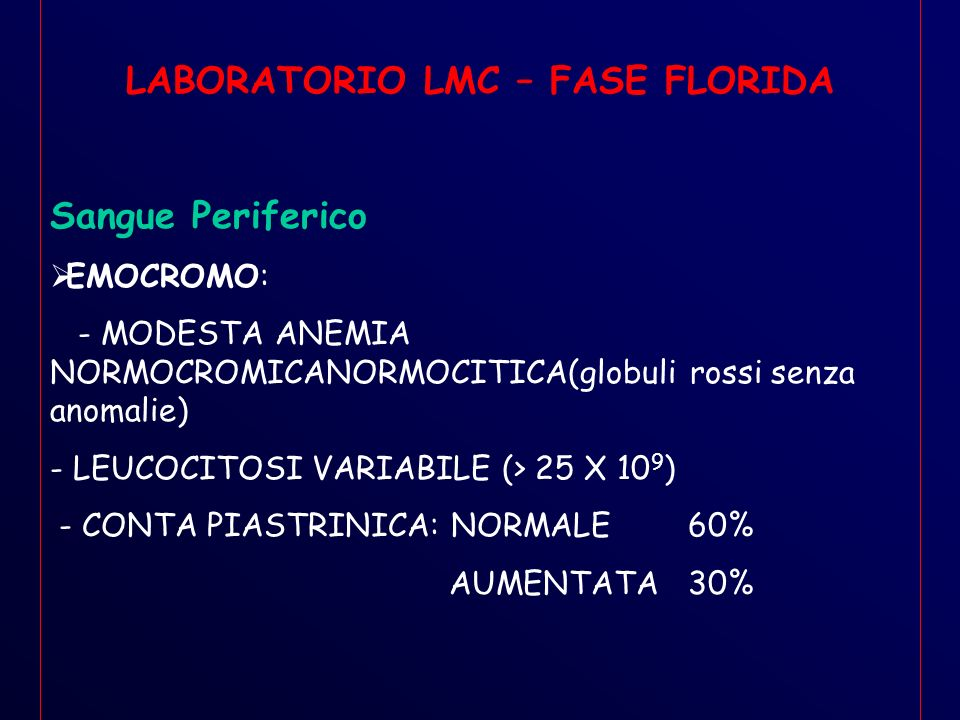 LABORATORIO LMC – FASE FLORIDA