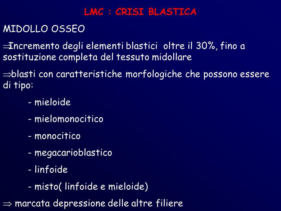 LMC : CRISI BLASTICA MIDOLLO OSSEO. Incremento degli elementi blastici oltre il 30%, fino a sostituzione completa del tessuto midollare.