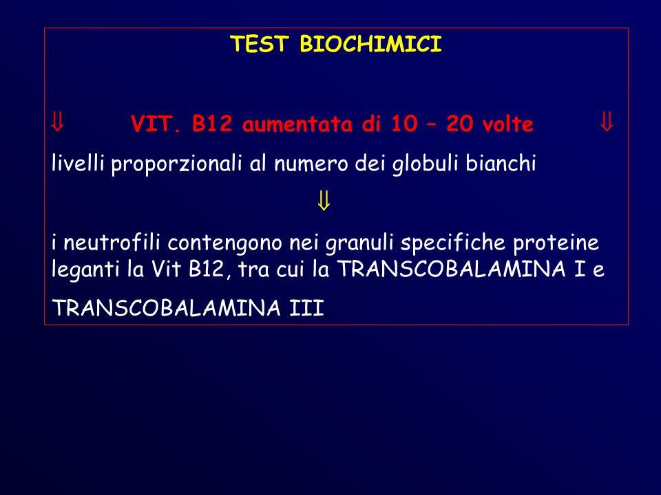 TEST BIOCHIMICI  VIT. B12 aumentata di 10 – 20 volte  livelli proporzionali al numero dei globuli bianchi.