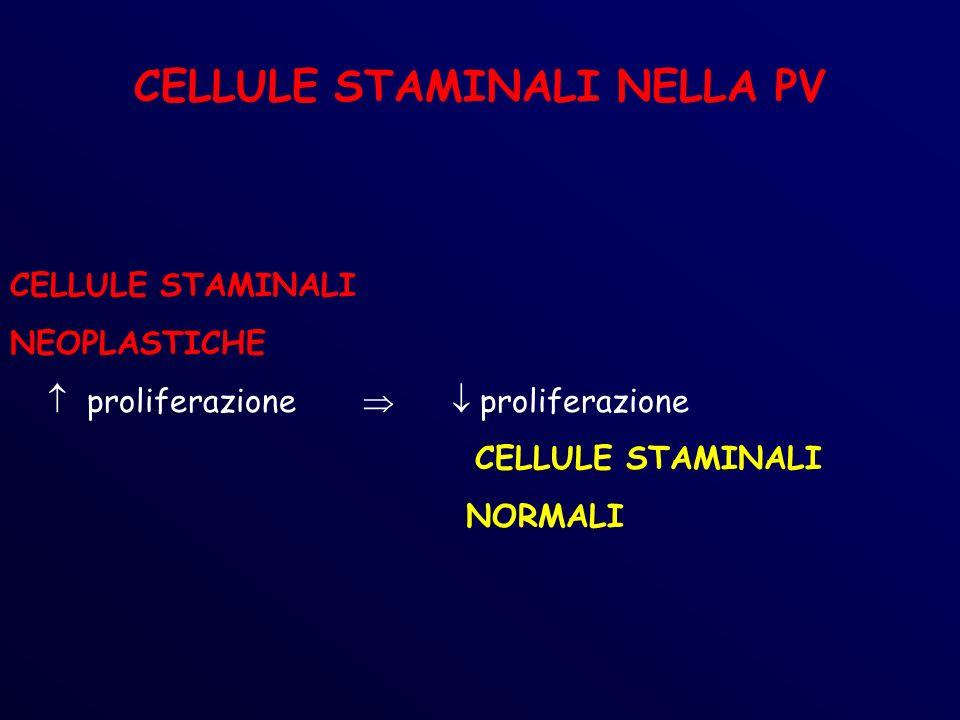 CELLULE STAMINALI NELLA PV