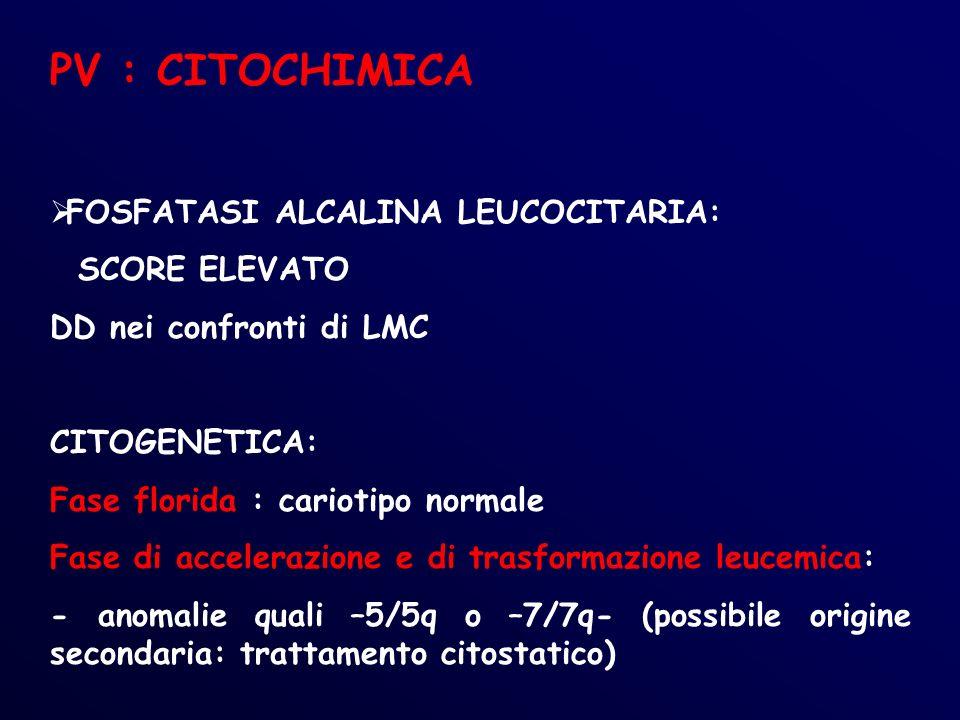 PV : CITOCHIMICA FOSFATASI ALCALINA LEUCOCITARIA: SCORE ELEVATO