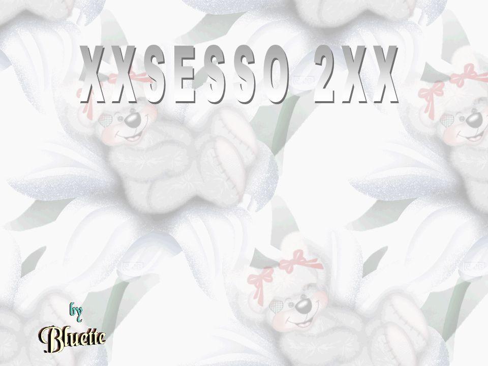 XXSESSO 2XX