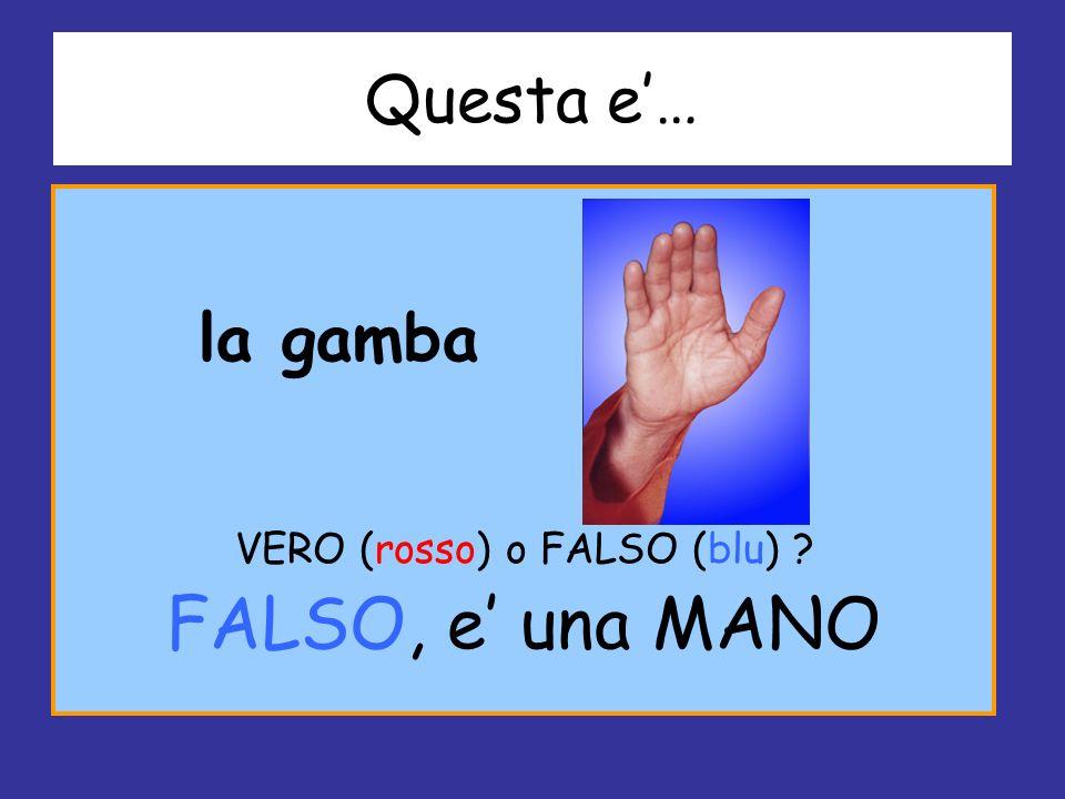 VERO (rosso) o FALSO (blu)
