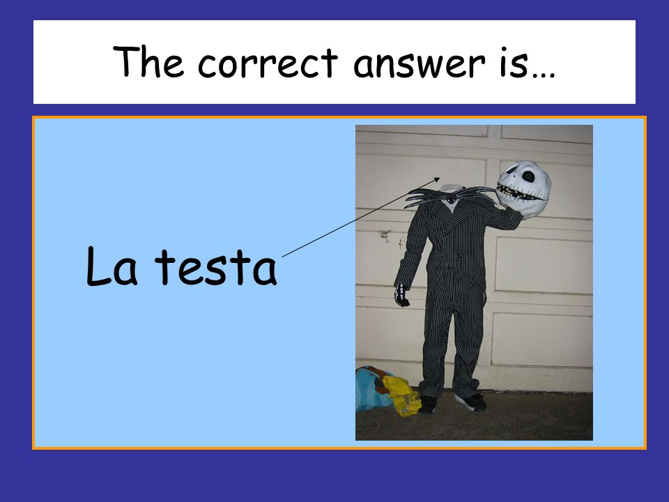 The correct answer is… La testa