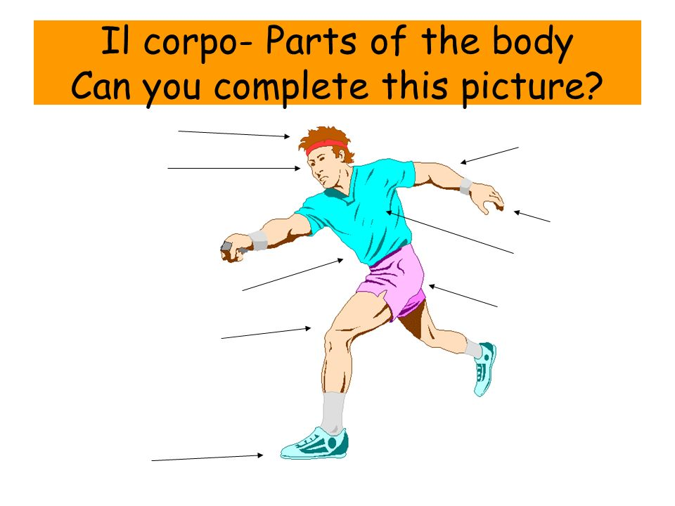 Il corpo- Parts of the body Can you complete this picture