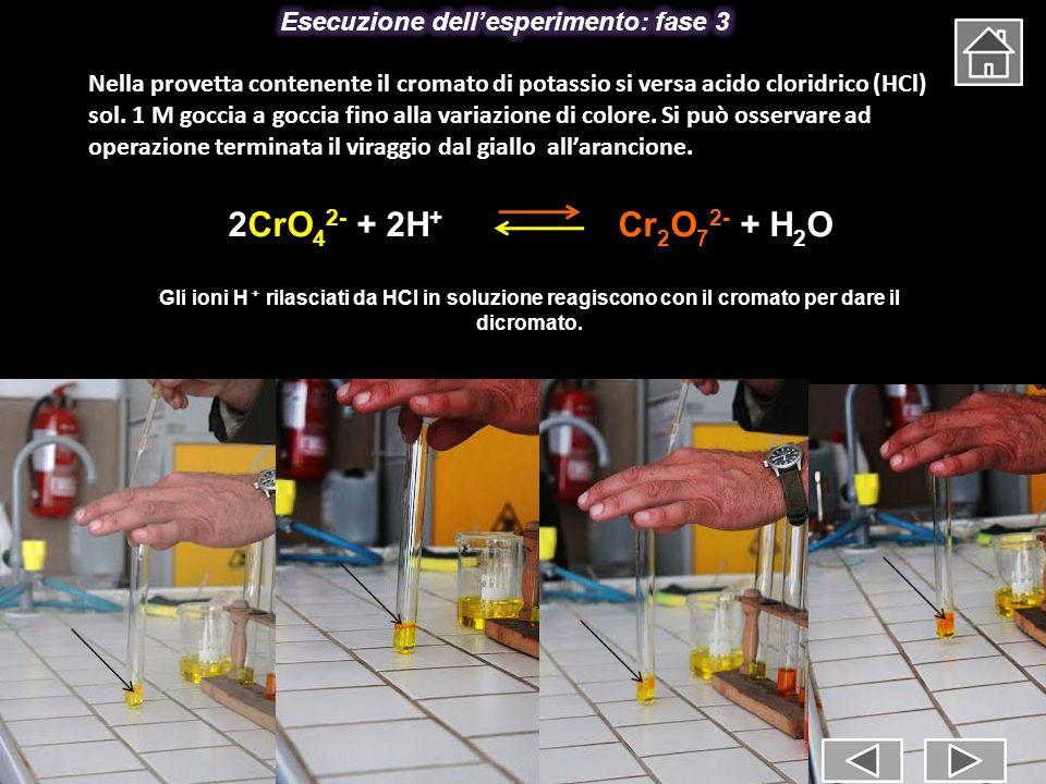 Esecuzione dell'esperimento: fase 3