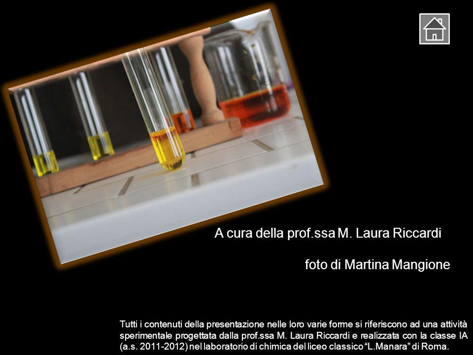 A cura della prof.ssa M. Laura Riccardi foto di Martina Mangione