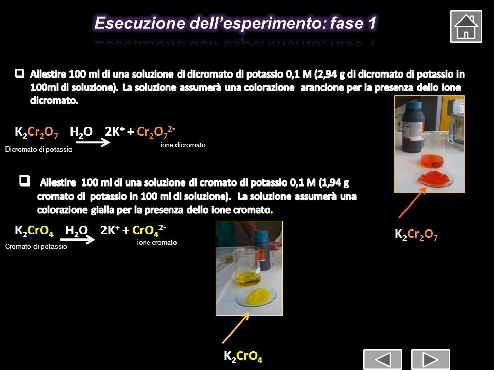 Esecuzione dell'esperimento: fase 1