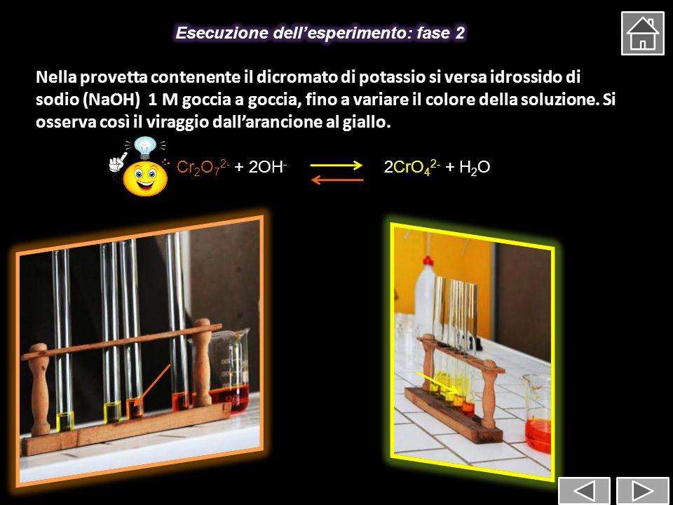 Esecuzione dell'esperimento: fase 2