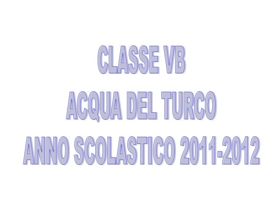 CLASSE VB ACQUA DEL TURCO ANNO SCOLASTICO 2011-2012