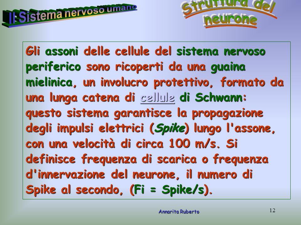 diesse- Incontro pubblico- 21/02/06- Ravenna