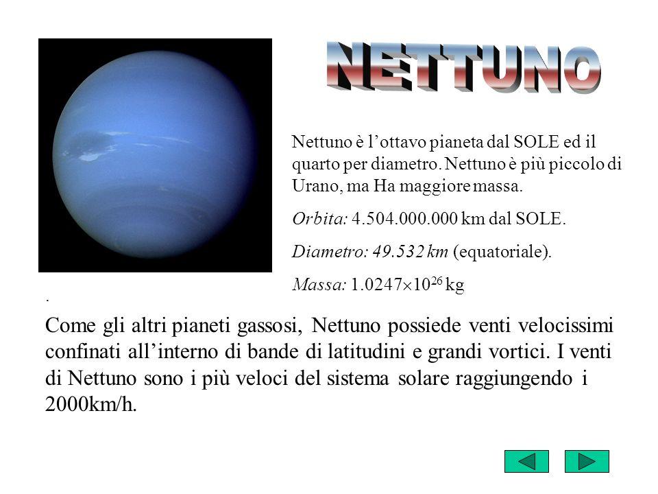 NETTUNO Nettuno è l'ottavo pianeta dal SOLE ed il quarto per diametro. Nettuno è più piccolo di Urano, ma Ha maggiore massa.