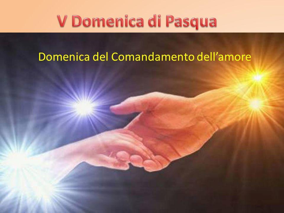 V Domenica di Pasqua Domenica del Comandamento dell'amore