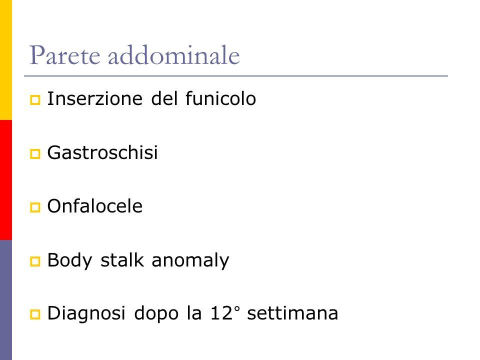 Parete addominale Inserzione del funicolo Gastroschisi Onfalocele