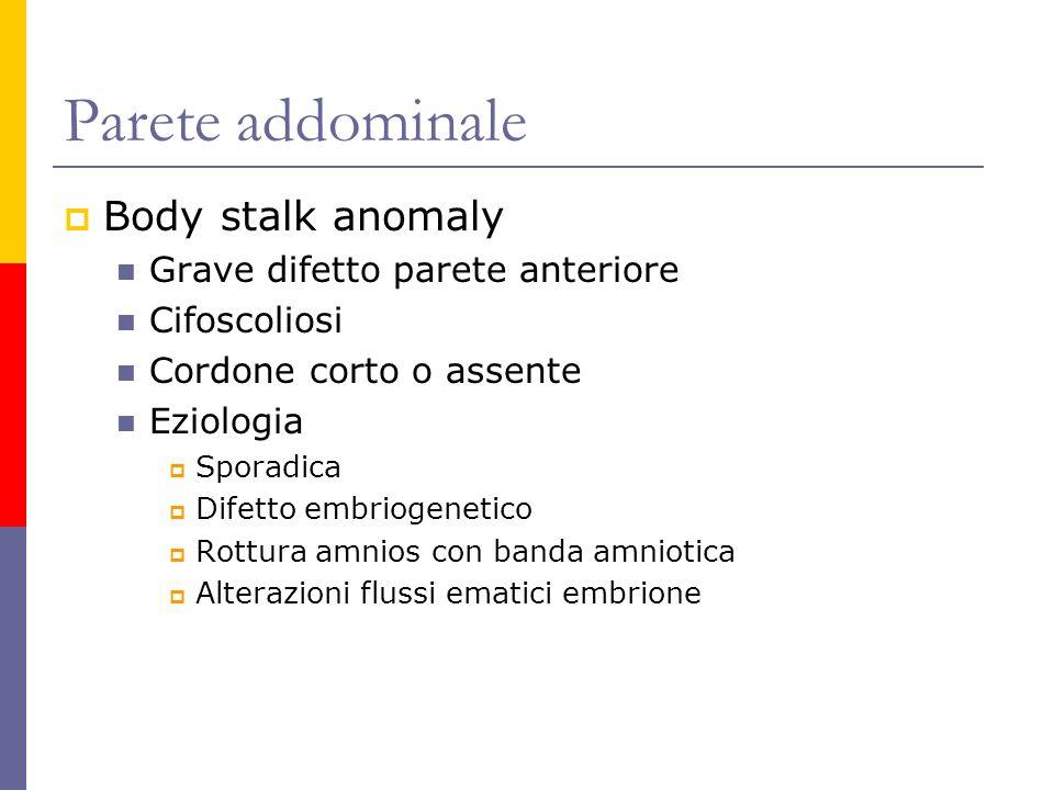 Parete addominale Body stalk anomaly Grave difetto parete anteriore
