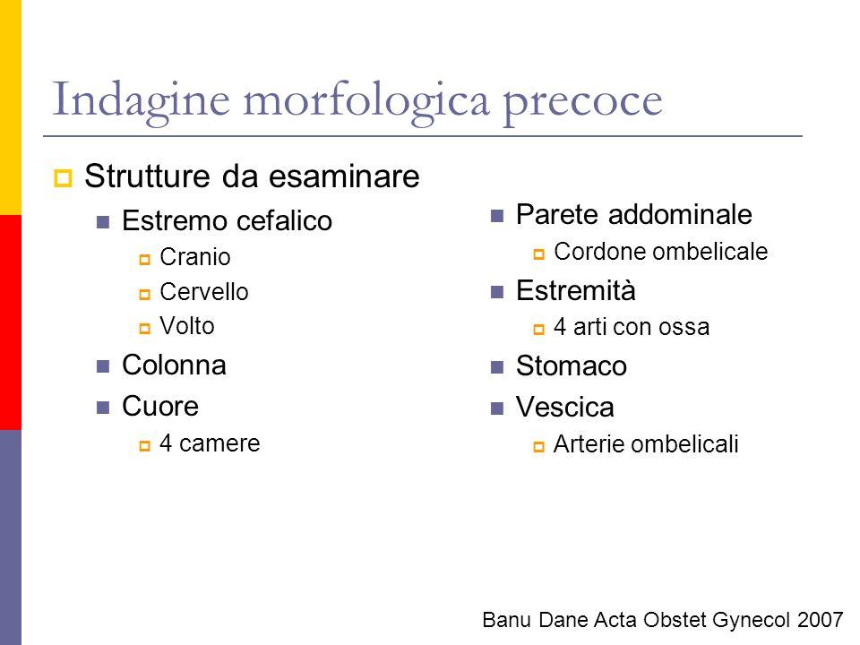 Indagine morfologica precoce