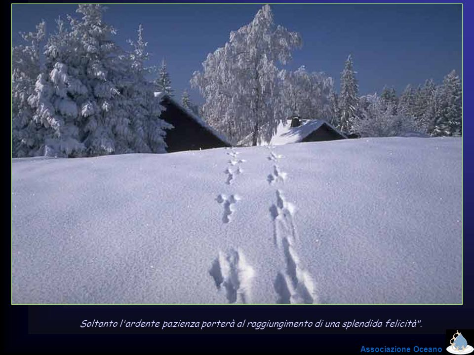 Soltanto l ardente pazienza porterà al raggiungimento di una splendida felicità .
