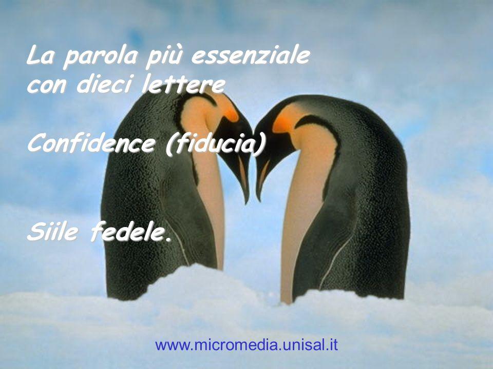 La parola più essenziale con dieci lettere Confidence (fiducia)