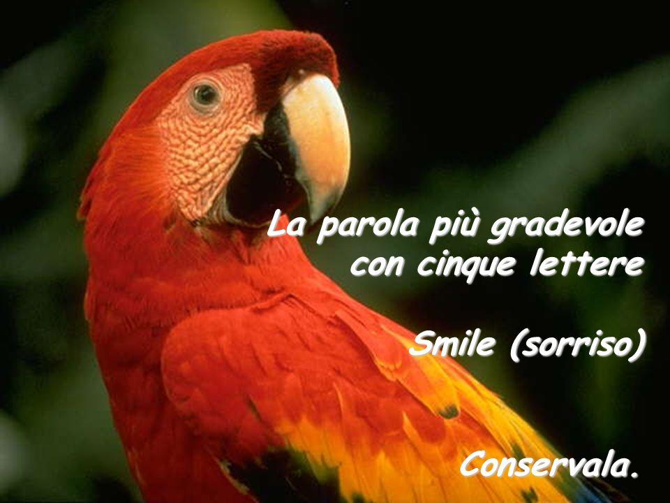 La parola più gradevole con cinque lettere Smile (sorriso)
