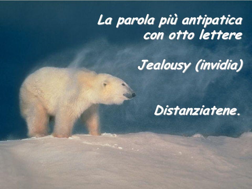 La parola più antipatica con otto lettere Jealousy (invidia)