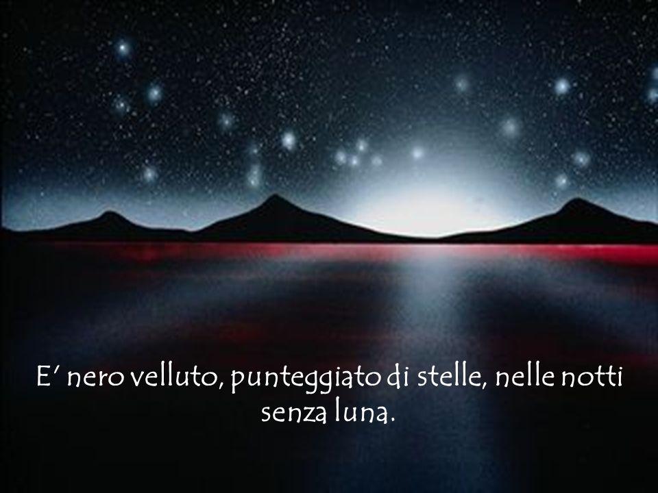 E nero velluto, punteggiato di stelle, nelle notti senza luna.