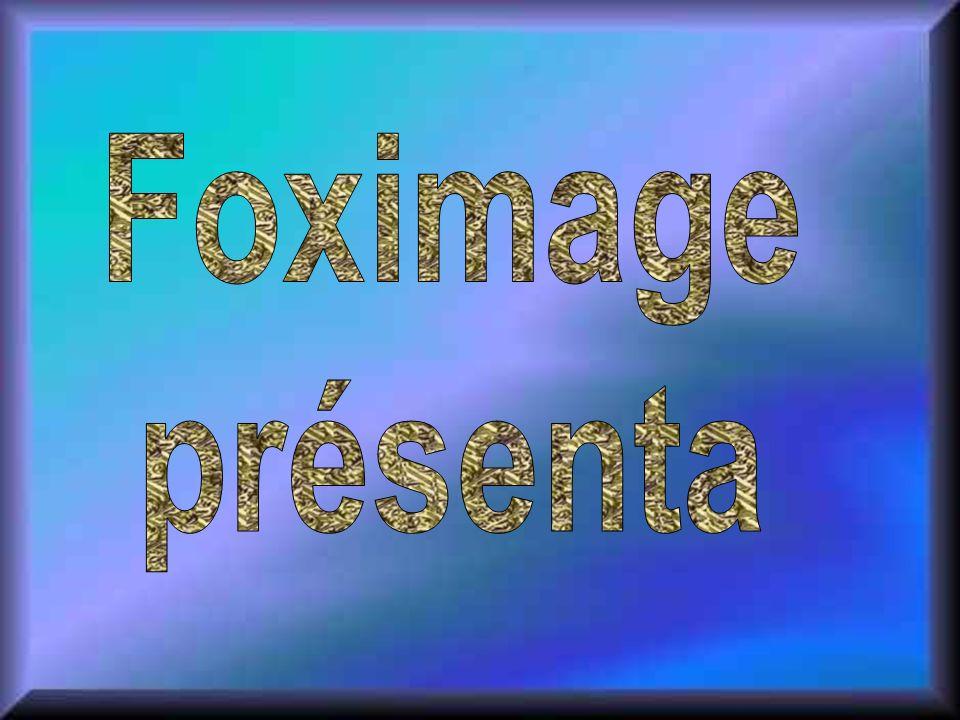 Foximage présenta