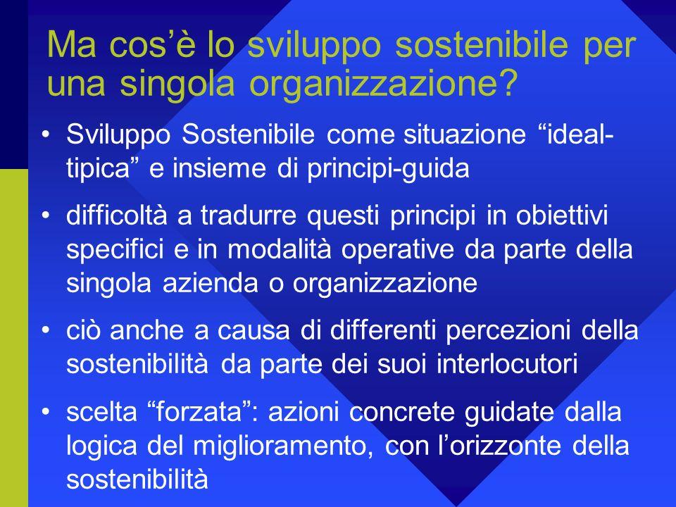 Ma cos'è lo sviluppo sostenibile per una singola organizzazione