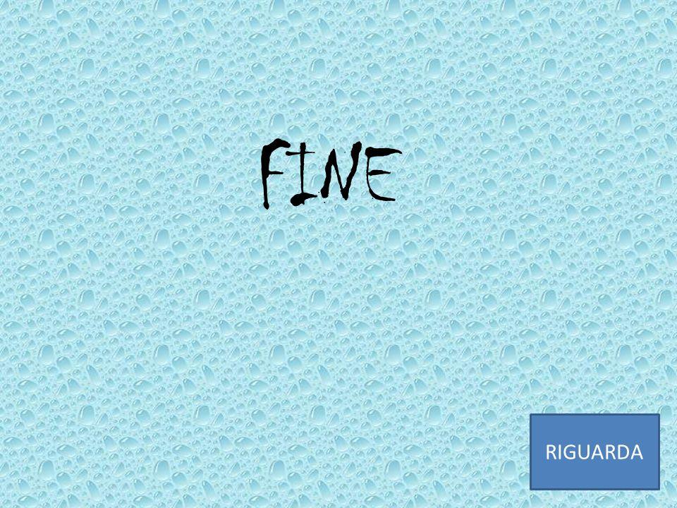 FINE RIGUARDA