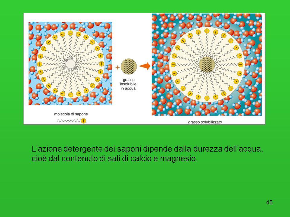 L'azione detergente dei saponi dipende dalla durezza dell'acqua, cioè dal contenuto di sali di calcio e magnesio.