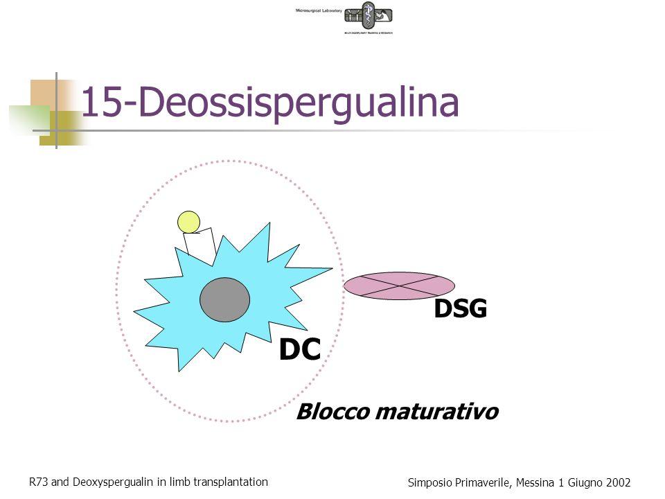 15-Deossispergualina DC DSG Blocco maturativo