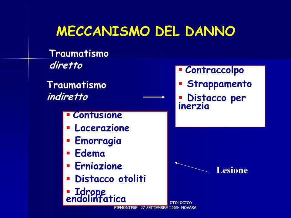 X WORKSHOP DEL GRUPPO OTOLOGICO PIEMONTESE 27 SETTEMBRE 2003- NOVARA