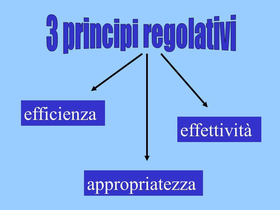 3 principi regolativi efficienza effettività appropriatezza