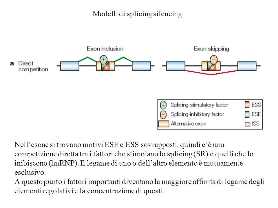 Modelli di splicing silencing