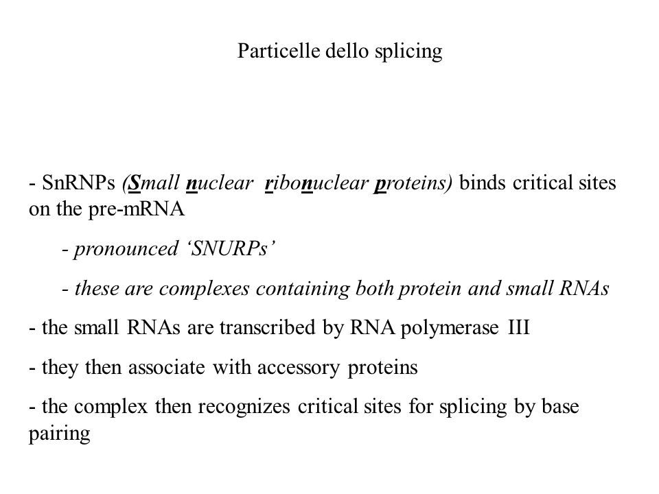 Particelle dello splicing