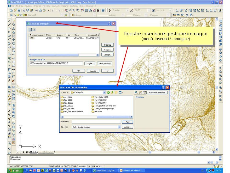 finestre inserisci e gestione immagini (menù: inserisci / immagine)