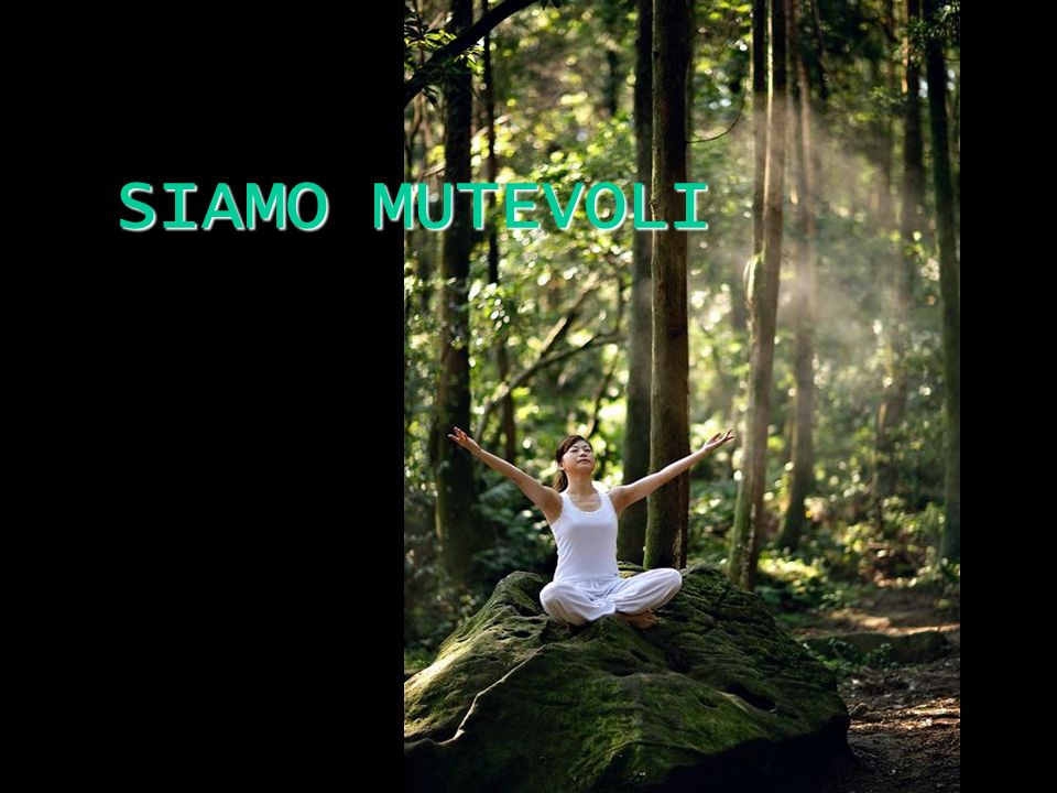 SIAMO MUTEVOLI