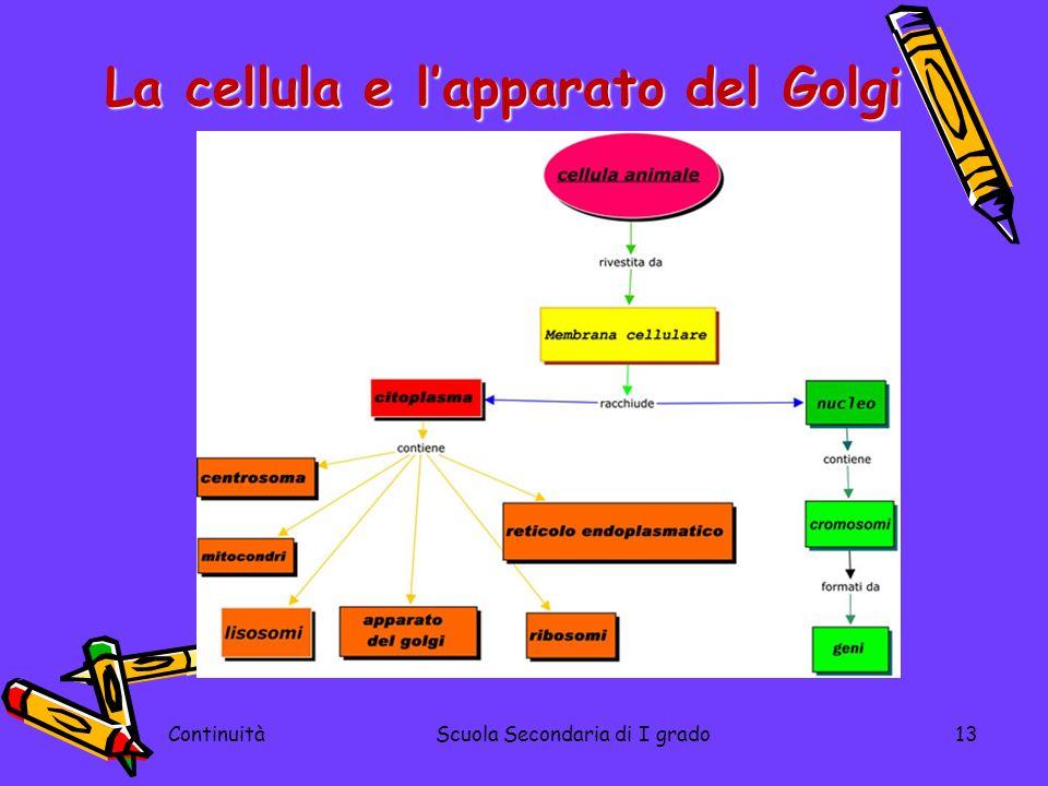 La cellula e l'apparato del Golgi