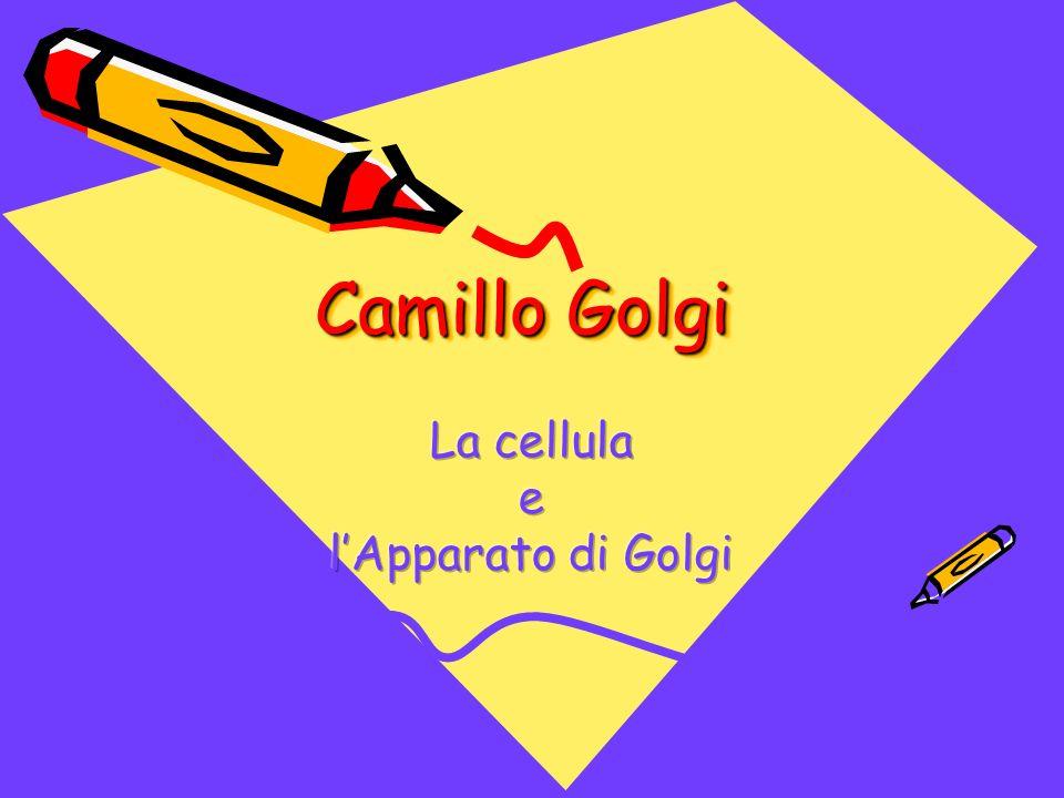 Scopro con le mani La cellula e l'Apparato di Golgi