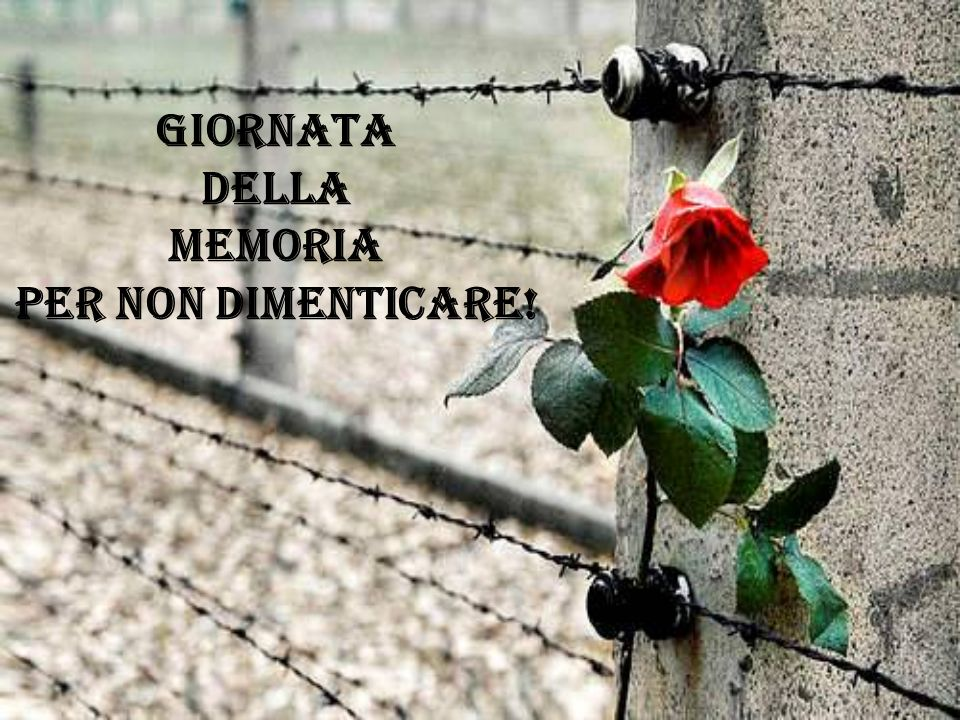 GIORNATA DELLA MEMORIA PER NON DIMENTICARE!