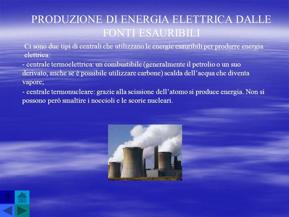 PRODUZIONE DI ENERGIA ELETTRICA DALLE FONTI ESAURIBILI