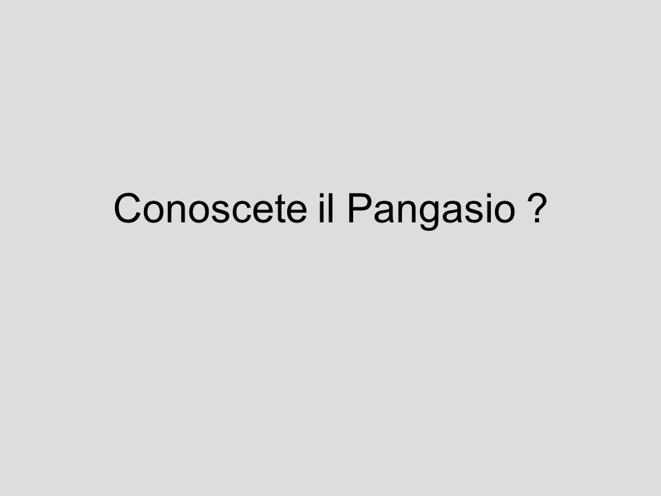 Conoscete il Pangasio