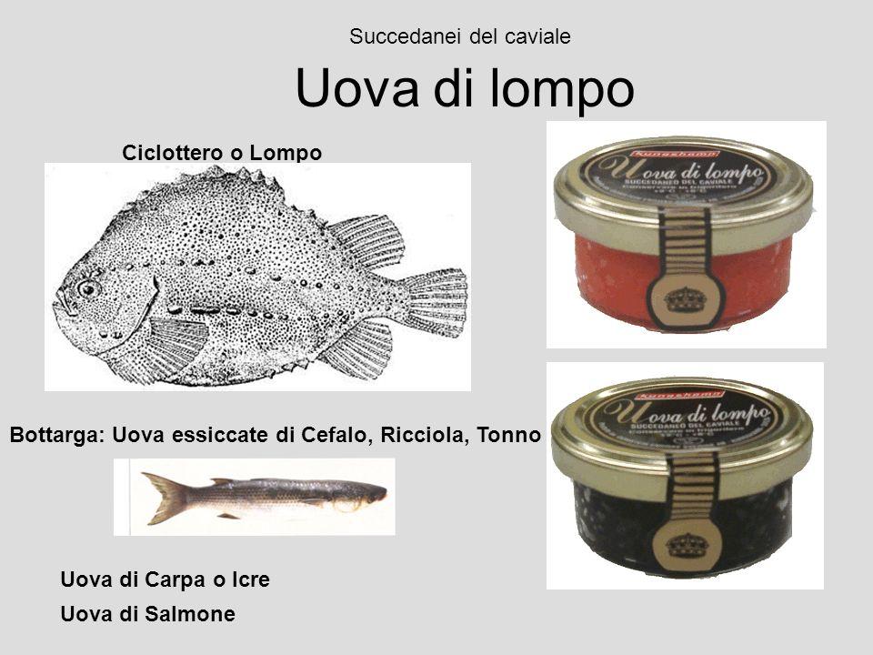 Uova di lompo Succedanei del caviale Ciclottero o Lompo