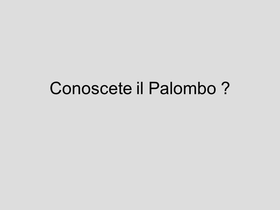 Conoscete il Palombo