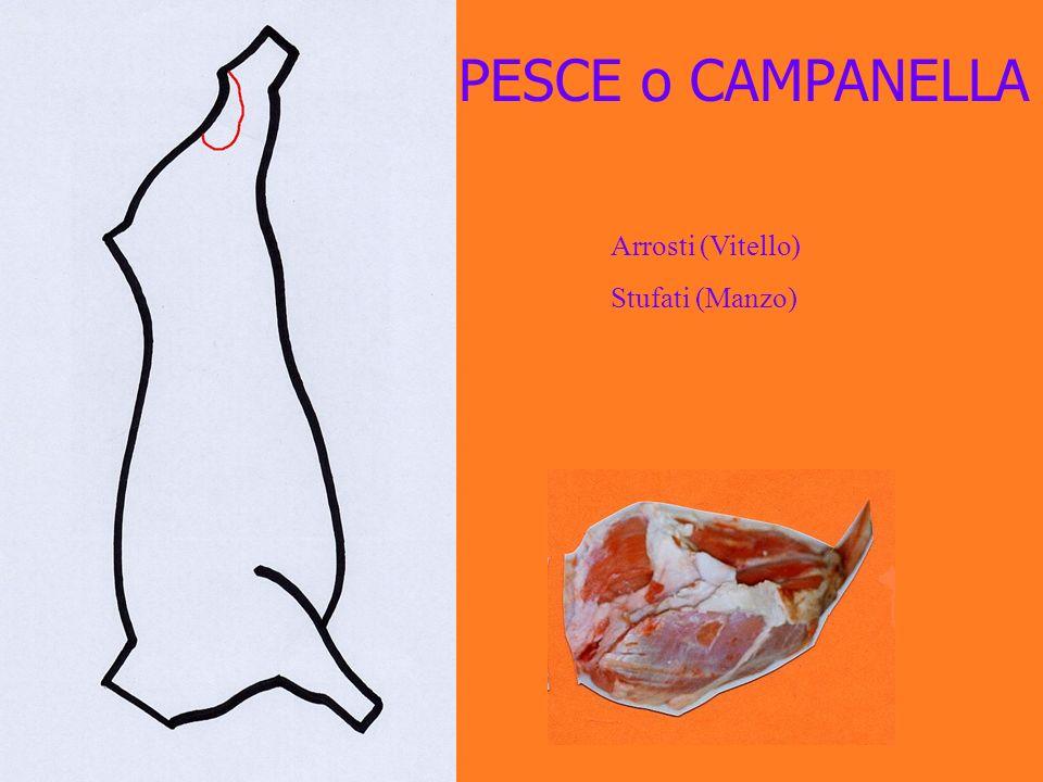 PESCE o CAMPANELLA Arrosti (Vitello) Stufati (Manzo)