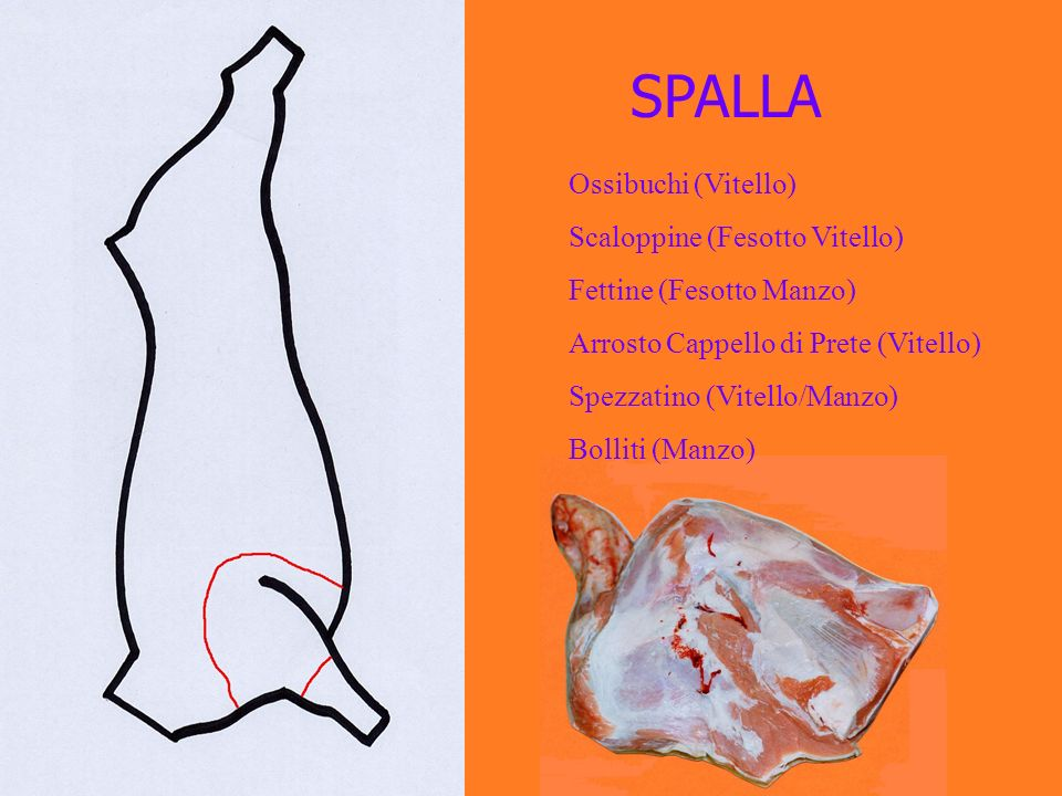 SPALLA Ossibuchi (Vitello) Scaloppine (Fesotto Vitello)