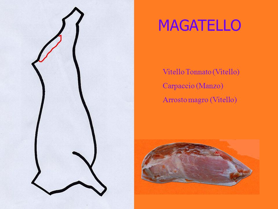 MAGATELLO Vitello Tonnato (Vitello) Carpaccio (Manzo)